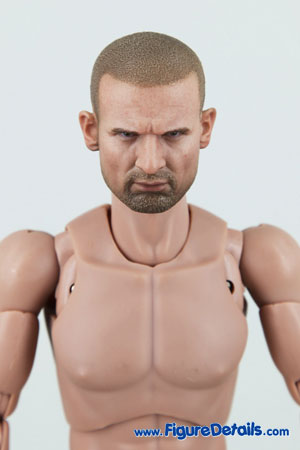 Hot Toys Caucasian Male TrueType body Overview